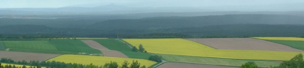 kohlberg_landschaft