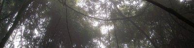 pw_natur_0018